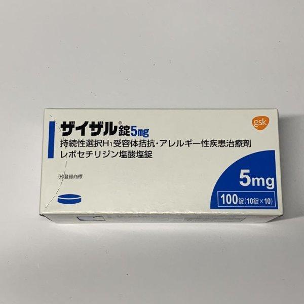 画像1: ザイザル錠5mg 100T【グラクソスミスクライン】 (1)